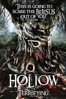 Hollow Poster