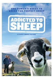 Addicted to Sheep poster